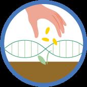 Seed-breeders