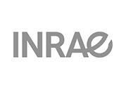 logo_inrae_ng