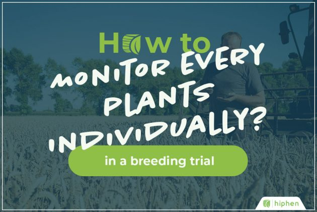 how to monitor plants individually with uav