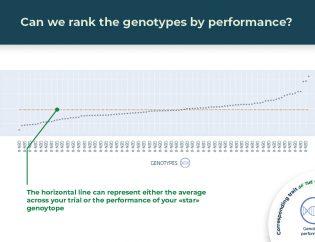 genotypes performance ranking illustrated