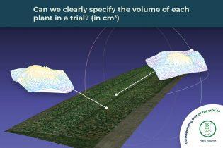 plant volume trait illustrated